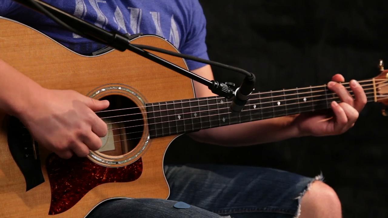 Beginner acoustic fingerpicking