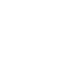 Icon vocals white 2x